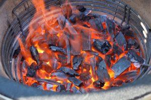 kamado barbecue pro